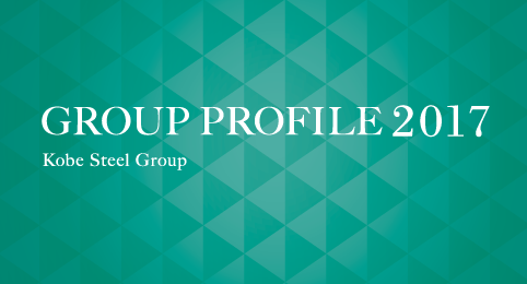 Group Profile 2017